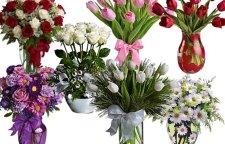 莆田插花兴趣班,兴趣班:学期:6天学费:680元花材认识,花材养护,插花工具