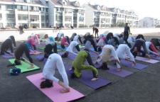 可以改善睡眠的瑜伽练习