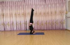简单的瑜伽体式练习,瑜伽很多体位都是针对脊柱练习的,前屈类就是指脊柱向