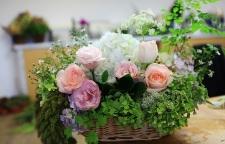 园区哪里有学习插花艺术班_苏州插花培训,通透人生,内在喜悦。期待,在【