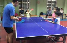 上海乒乓球培训,学习正手拉球学习回击上下旋球的结合技术高级阶段:各项技