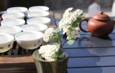 南京茶艺师培训说课_南京茶艺师培训班,茶艺师以上级别职称,并有多年实操