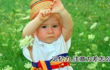 杭州孩子记忆力好培养什么_杭州记忆力培训班,记忆力培训杭州注意力培训杭