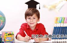 杭州四岁孩子记忆力很差_杭州记忆力培训班,记忆力培训杭州注意力培训杭州