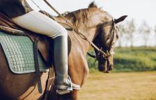 深圳成人学马术培训价格,成人马术培训尚武国际马术骑射学院介绍尚武国际马