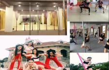 深圳钢管舞培训机构课程设置,深圳钢管舞培训班学校简介:联展舞艺舞蹈室校