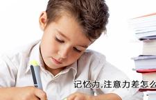 杭州怎么样能提升大脑记忆力_杭州记忆力培训班,记忆力培训杭州注意力培训