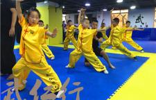 少儿武术课程,少儿武术:是根据少儿的心理、生理和年龄特点,在吸取中国武