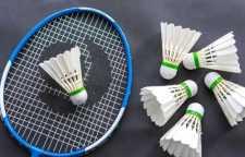 深圳成人声乐培训机构,式网球、泡沫海绵球棒、PVC棒球手套固定考核升级