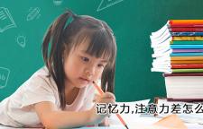 杭州小孩子记忆力不达标_杭州记忆力培训班,记忆力培训杭州注意力培训杭州