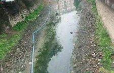 江阴市工厂化粪池清理正规环保处理公司