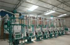 大型面粉機械廠家專業團隊在線服務