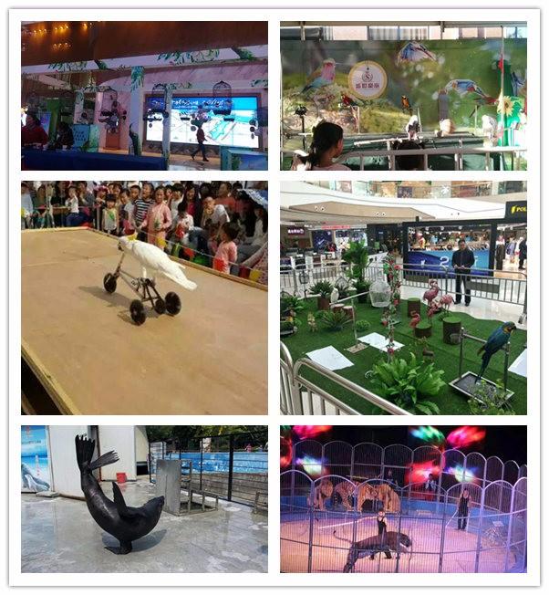 葫芦岛海洋生物鱼缸展览哪里有