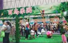 乐山市市中区海狮表演出租一天多少钱活动案例