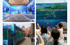 赣州市海洋生物鱼缸展出租全国低价