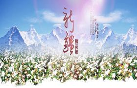 【正宗新疆】棉絮一级棉花被  手工棉花 限时活动 有网10.5斤