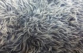 供应舒棉绒,阳离子梳棉绒,双面舒棉绒,双面拉毛布,双面阳离子