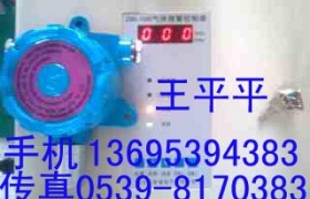硫化氢泄漏浓度检测仪