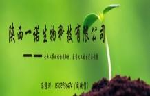 大豆膳食纖維 大豆纖維素60% 非轉基因大豆蛋白 一諾生物現貨