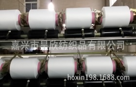 定做环保人棉40S+本白半消光涤纶钻石丝30D/36F并线合股纱