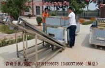 杏子去核机Apricot kernel pitting machine