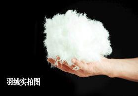 厂家直销优质羽绒80 白鹅绒 水洗羽绒 羽绒填充物 批发