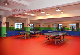乒乓球塑胶地板 pvc地板 乒乓球运动