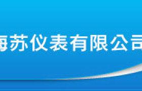 批發供應 渦輪流量傳感器 渦輪傳感器 廠家