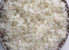 【热销中..】 水洗毛片 纯白鸭绒片 羽绒批发 萧山厂家直销 羽绒