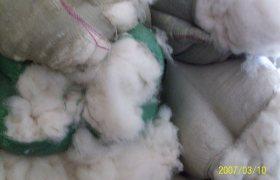 厂家直销羊毛  批发驼绒、羔羊绒