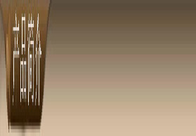 供应韩国 LG塑胶地板 -特兰迪系列PVC地板 商用环保进口批发渠道