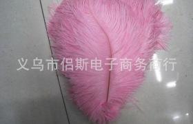 廠家直銷天然35-40CM染色鴕鳥毛 用于婚慶插花 舞蹈裝飾 可染色