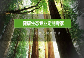 订做实木门 高档环保钢木实木门 生态木制实木门