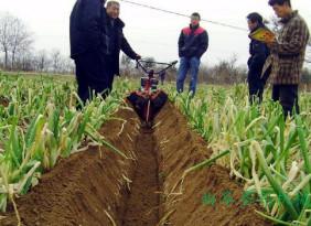 汽油手扶开沟培土机 开荒旋耕松土机 大蒜起垄开沟机