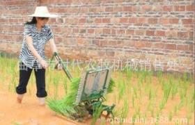農用乘坐式水稻插秧機 手搖式水稻種植機 手壓式兩四行水稻插秧機