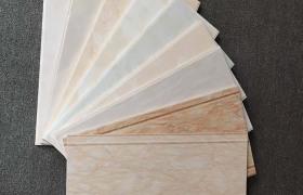 佛山陶樂軒  300*600不透水瓷片 廚房衛生間內墻磚 釉面磚
