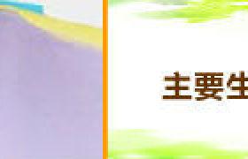 吳江工廠供應 環保染色  時裝坐墊靠墊面料 緯編彈力 超纖麂皮絨