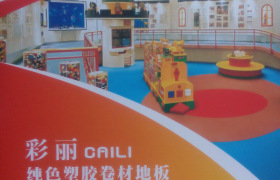 PVC地板 艾琪尔彩丽纯色地胶 PVC塑胶地板 PVC地板革 卷材地板
