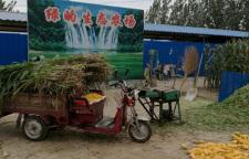 什么是生态养殖?生态养殖的标准