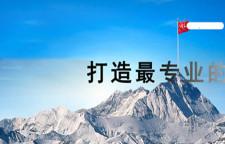 深圳荷兰小包专业物流公司