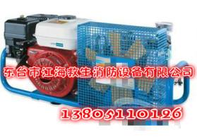 优质正品  正压式呼吸器充气泵 空气呼吸器充气泵 高压空气压缩机