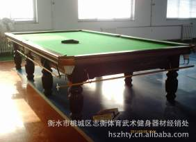 斯诺克台球桌 利德尔台球桌  台妮  台球杆  衡水体育武术