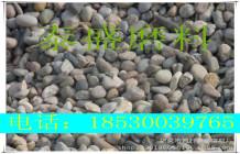 天然水處理卵石濾料 優質雜色鵝卵石 廠家直銷