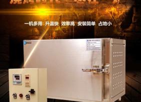 生元厂家生产的电烤箱  河北省专卖烤鱼箱