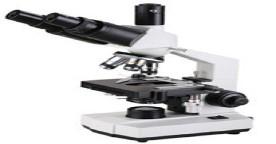供应XSP-100SM生物显微镜,三目显微镜,广州显微镜