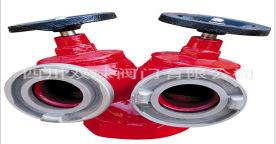 四川成发 SNSS65双阀双出口室内消火栓,DN80双出口室内消火栓