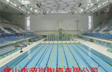 珠海泳池砖厂家-高质价美-客户认可