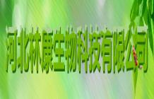 【河北林康】供應高活力纖維素酶 酶制劑 廠家直銷 資質齊全