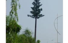 仿生树通讯塔现货_楼顶装饰塔价格【众达】