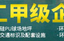 楚雄pu塑胶跑道铺设-选恒全专业施工团队